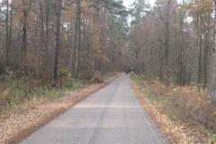 Jezioro Rajgrodzkie 6.11.2011r (16)