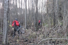 Jezioro Rajgrodzkie 6.11.2011r (36)