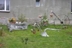 Jezioro Rajgrodzkie 6.11.2011r (67)