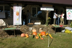 Krasnoborki festyn 10. 2011 (43)