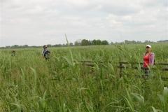 narwianski-pn-wiosna-2010-37