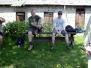 Sajenek-25-05-2003