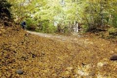 Smolniki 12.10.2003
