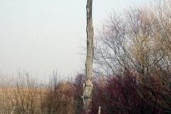Twierdza Osowiec-26