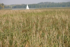 wiatroluza-2005-48