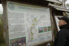 wycieczka-nad-biebrze-kopytkowo-2012-27